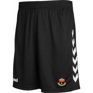 afcs_training_shorts_1901134091